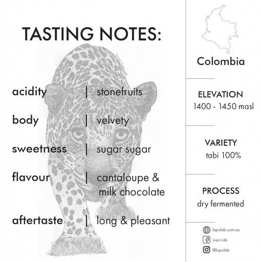 lupolab_colombia_coffee
