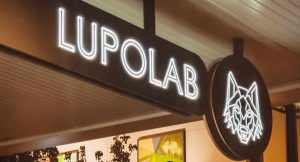 lupolab_best_italian_restaurant_perth